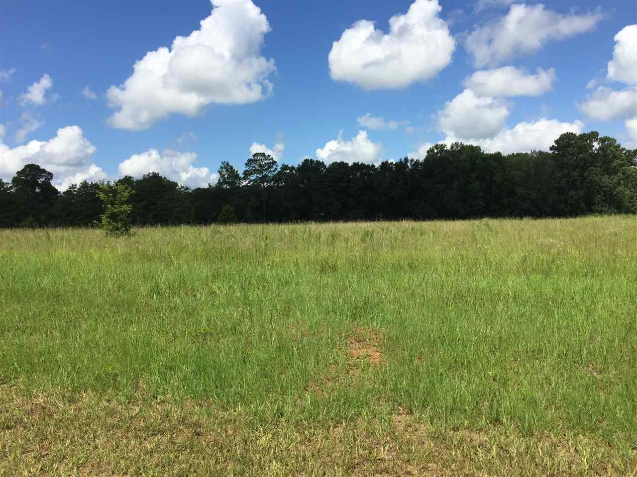 Lot 77 River Ridge , Hawkinsville, GA