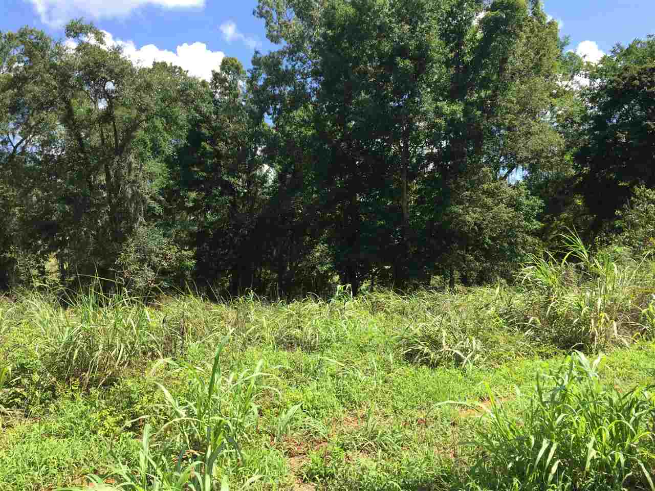 Lot 8 River Ridge , Hawkinsville, GA 31036