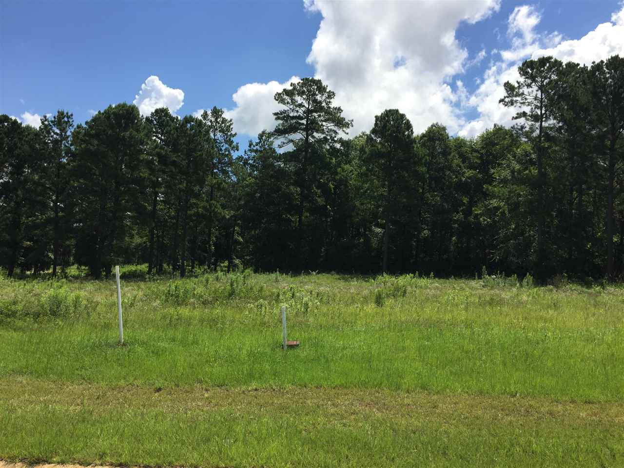 Lot 11 River Ridge , Hawkinsville, GA 31036