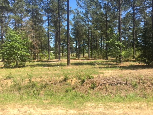 0 Hwy 341 (70+/- acres - Cypress Creek S/D) , Hawkinsville, GA 31036