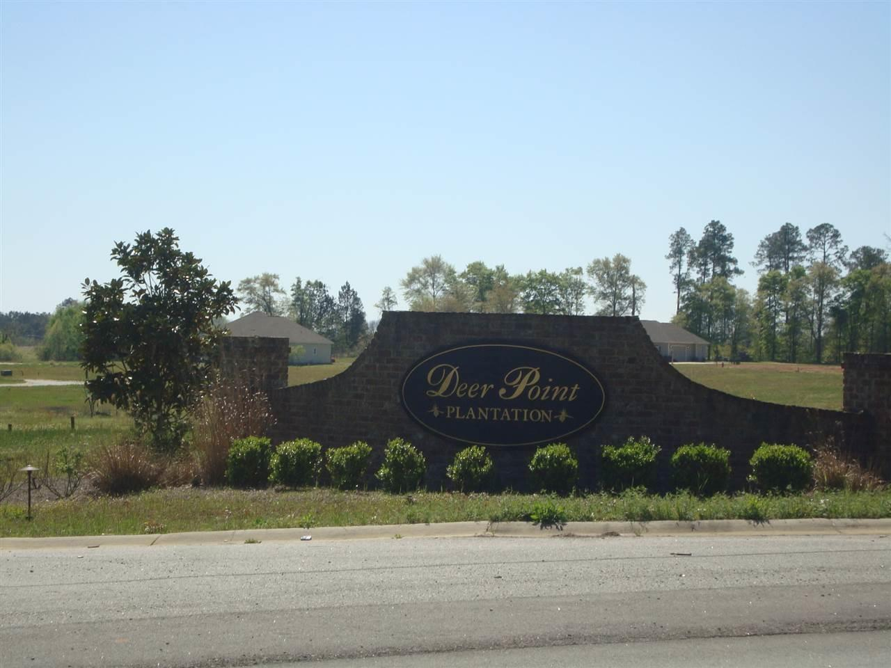 Lot 2 Deer Point , Hawkinsville, GA