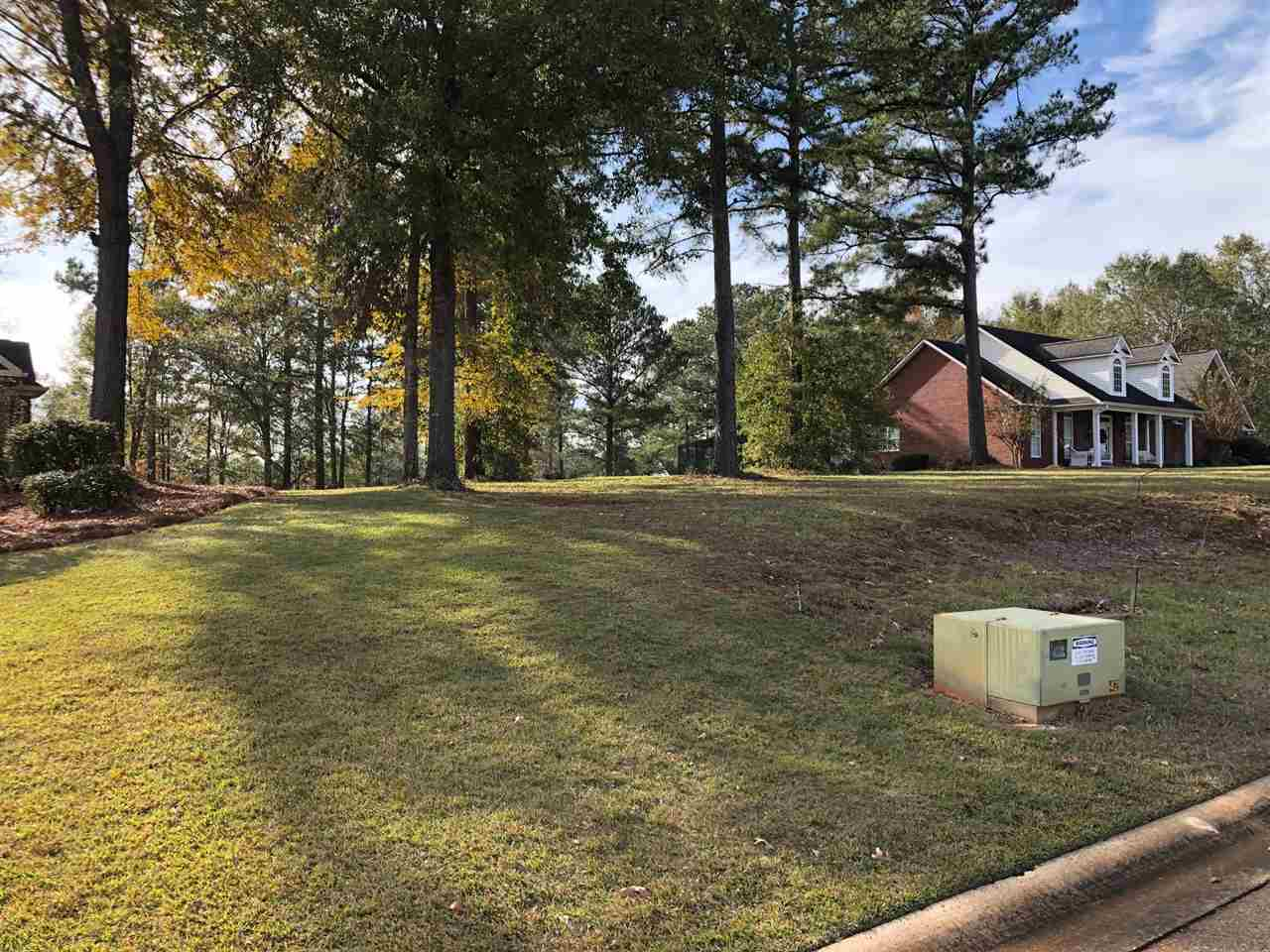 Lot 4 Charleston Circle, Hawkinsville, GA