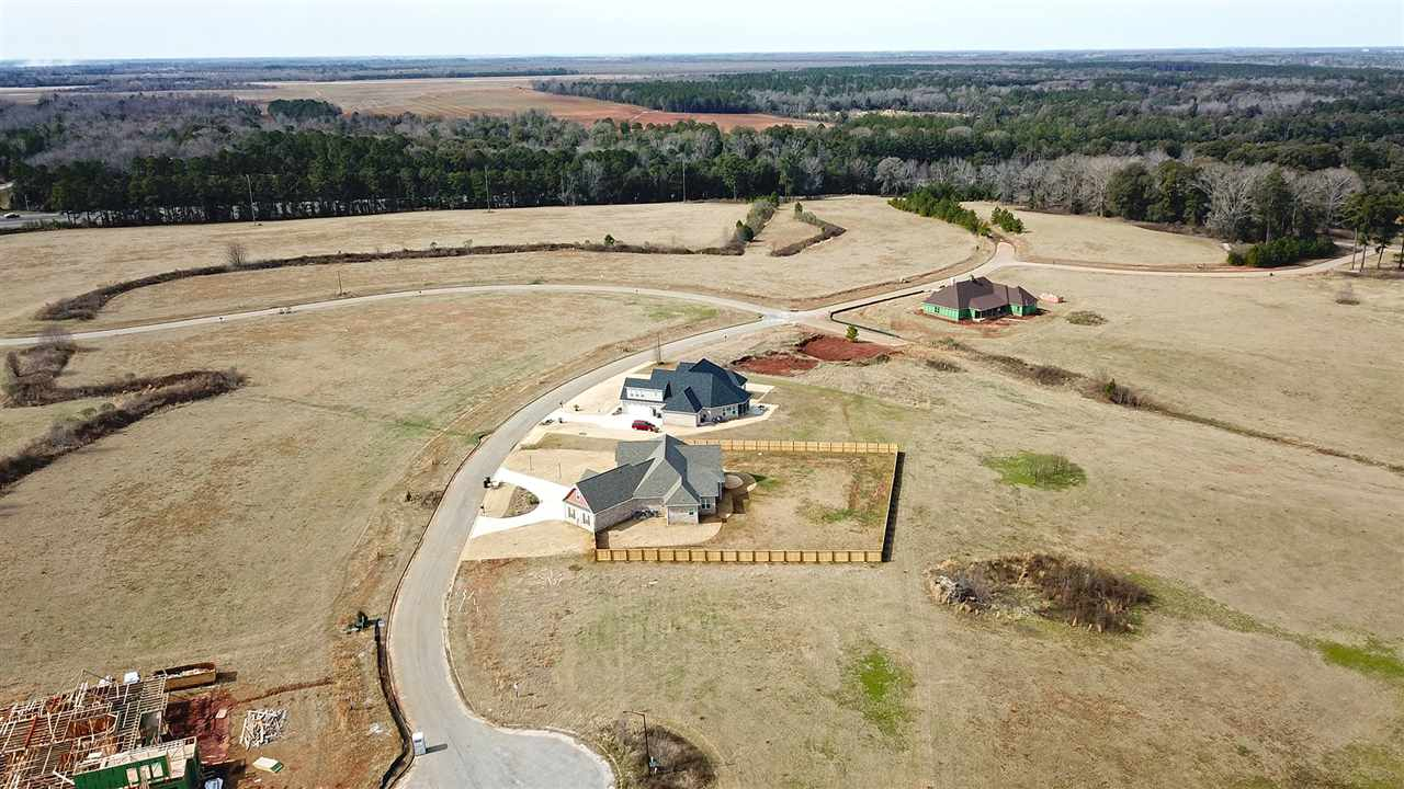 101 Wooden Nickel Plantation Way, Perry, GA 31069