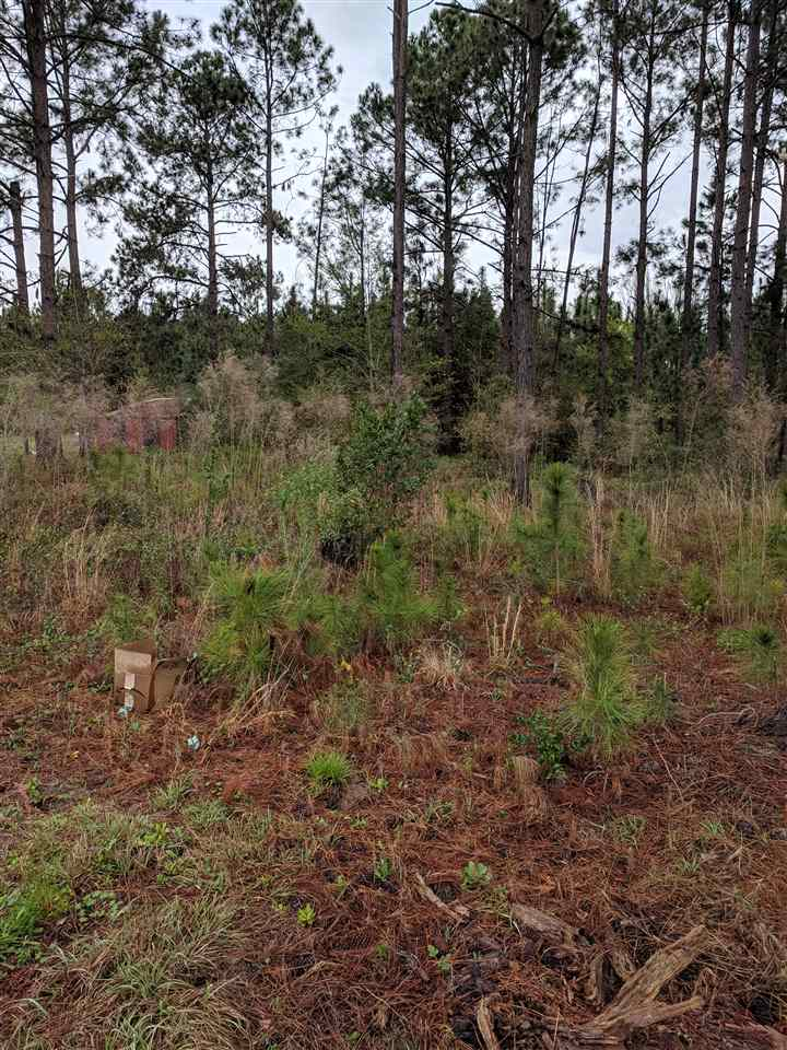 Lot 21 Whatley Drive, Ashburn, GA