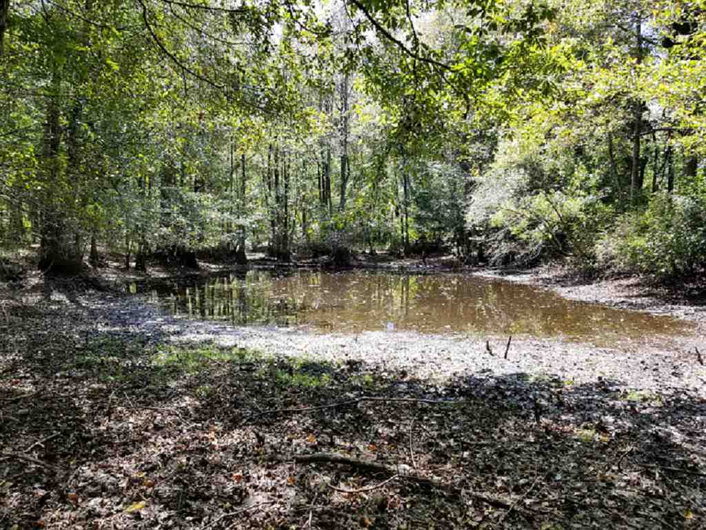 0 Suggs Mill Pond Rd , Reynolds, GA 31076