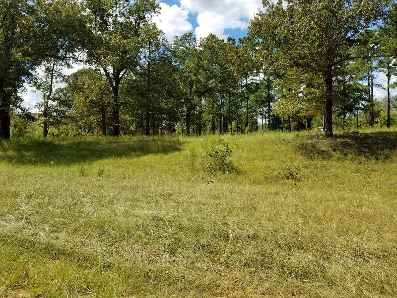 Lot 23 Mallard Circle , Butler, GA 31006