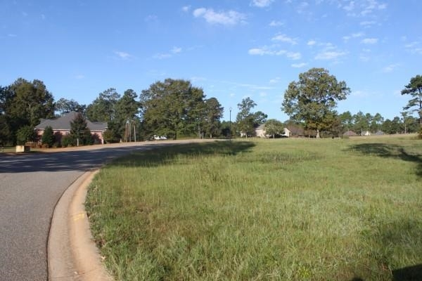 Lot 21 Camden Way, Hawkinsville, GA