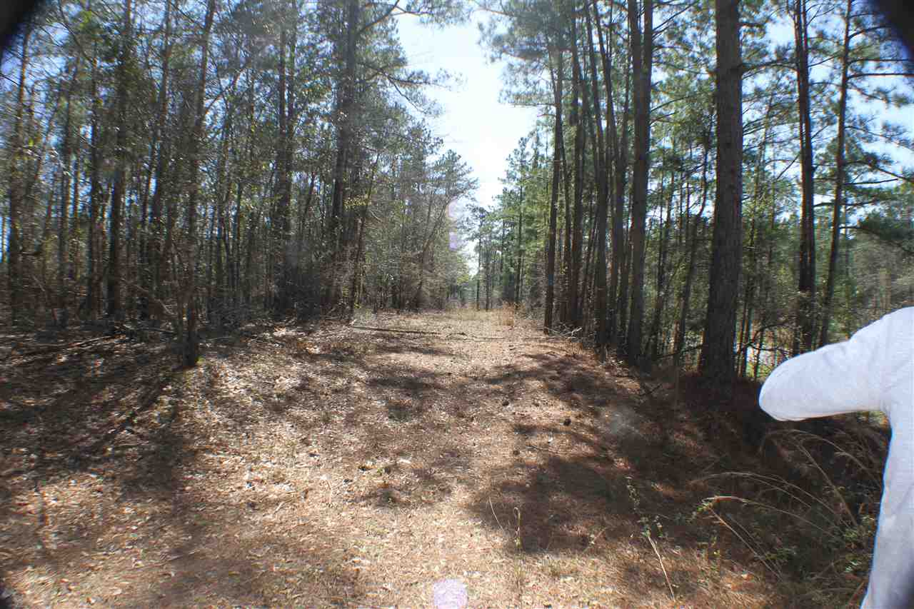 000 Cummings Road , Roberta, GA 31078