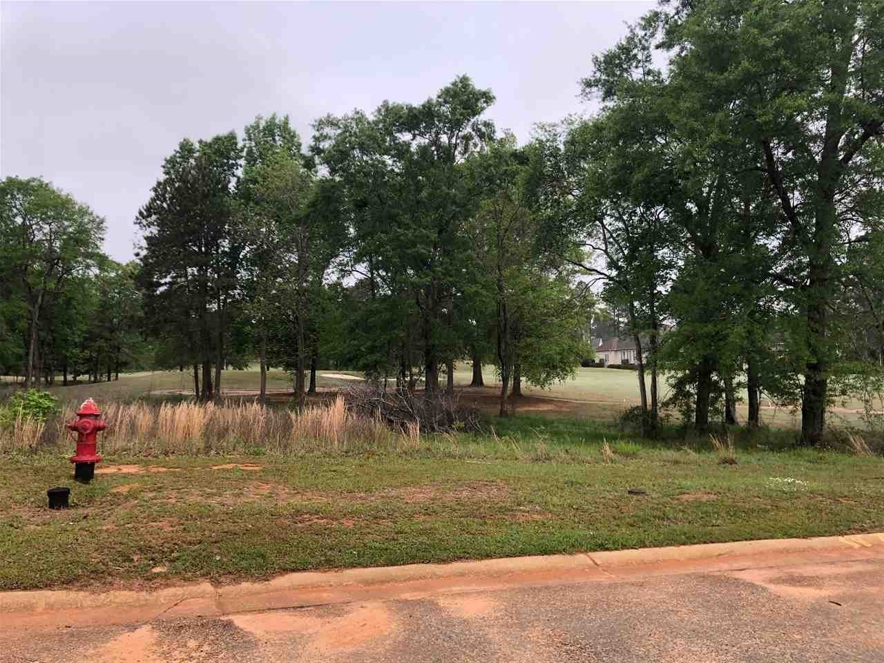 Lot 18 Camden Way, Hawkinsville, GA