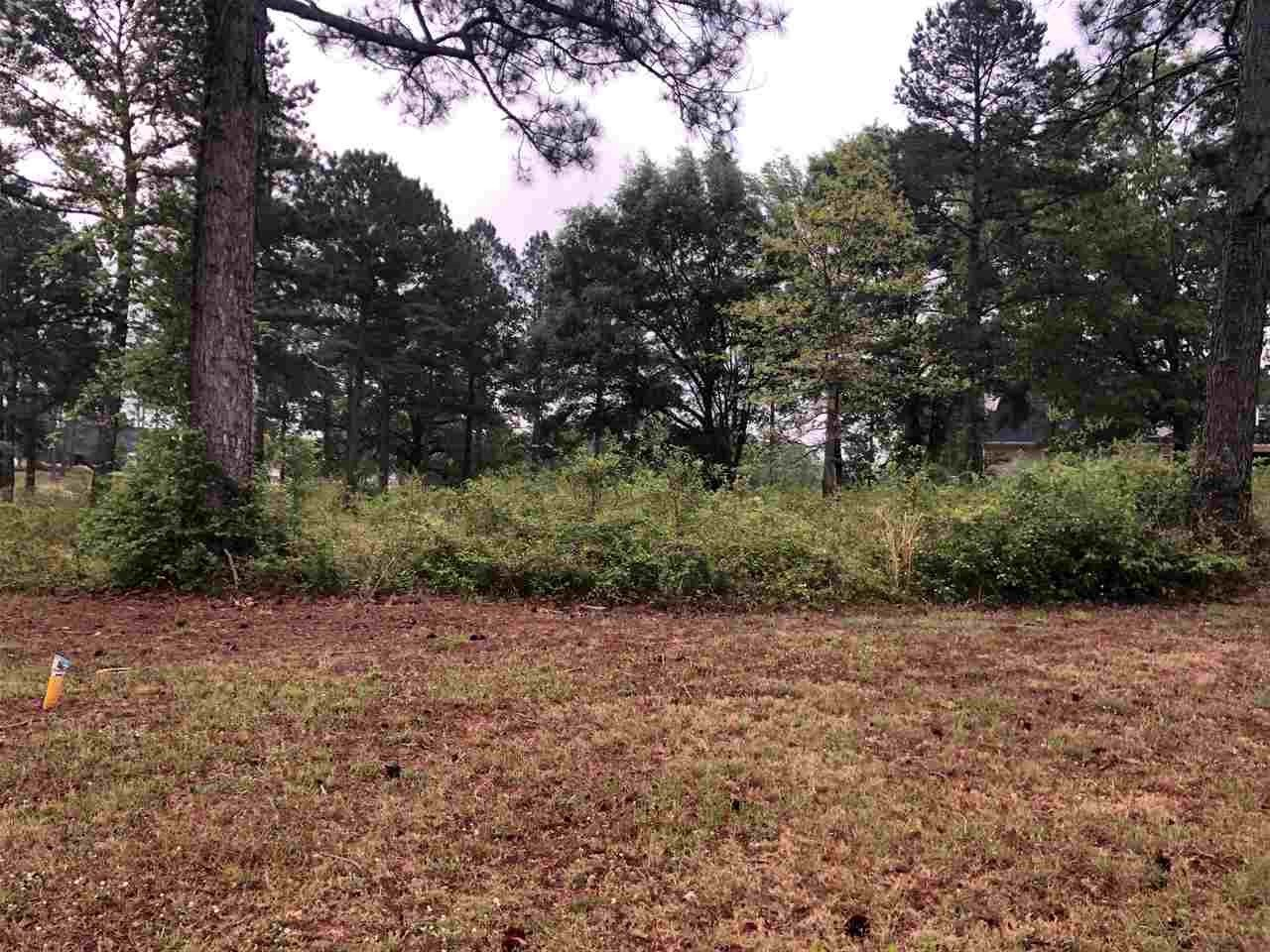 Lot 3 Oak Drive, Hawkinsville, GA 31036