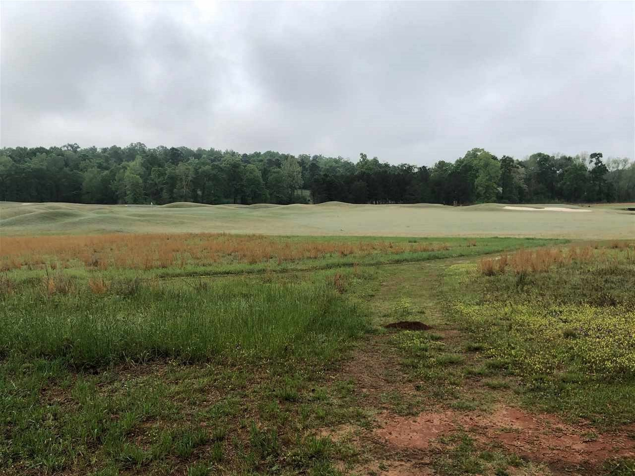 Lot 10 & 11 Charleston Circle, Hawkinsville, GA 31036