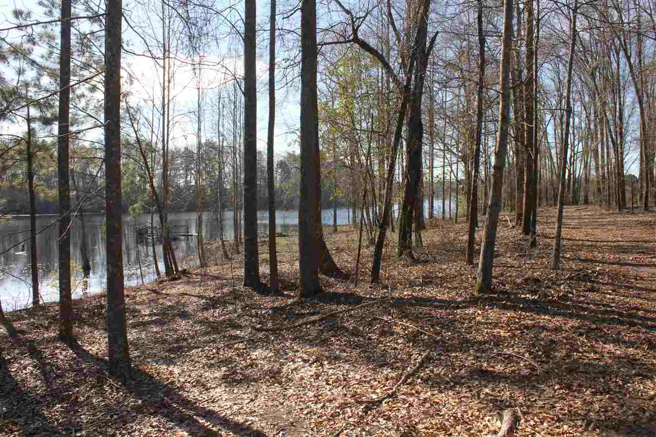 Lot 4 Clopine Lake Road, Fort Valley, GA 31030