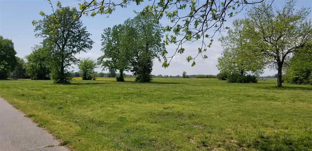 Magnolia Lane, Tiptonville, Tennessee 38079, ,Lots/land,For Sale,Magnolia Lane,188834