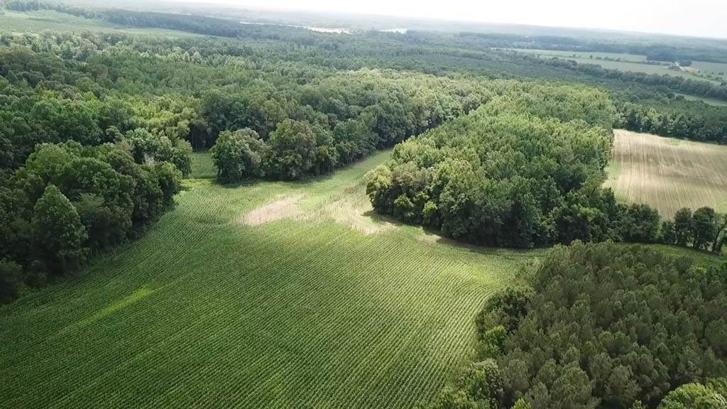 5190 Clay Farm Road, Atwood, Tennessee 38220, ,Lots/land,For Sale,5190 Clay Farm Road,189278