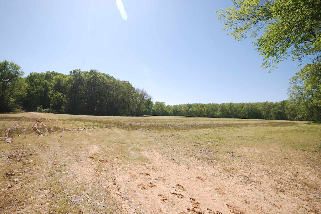 0 Lynn Haynes Road, Jackson, Tennessee 38305, ,Lots/land,For Sale,0 Lynn Haynes Road,201666