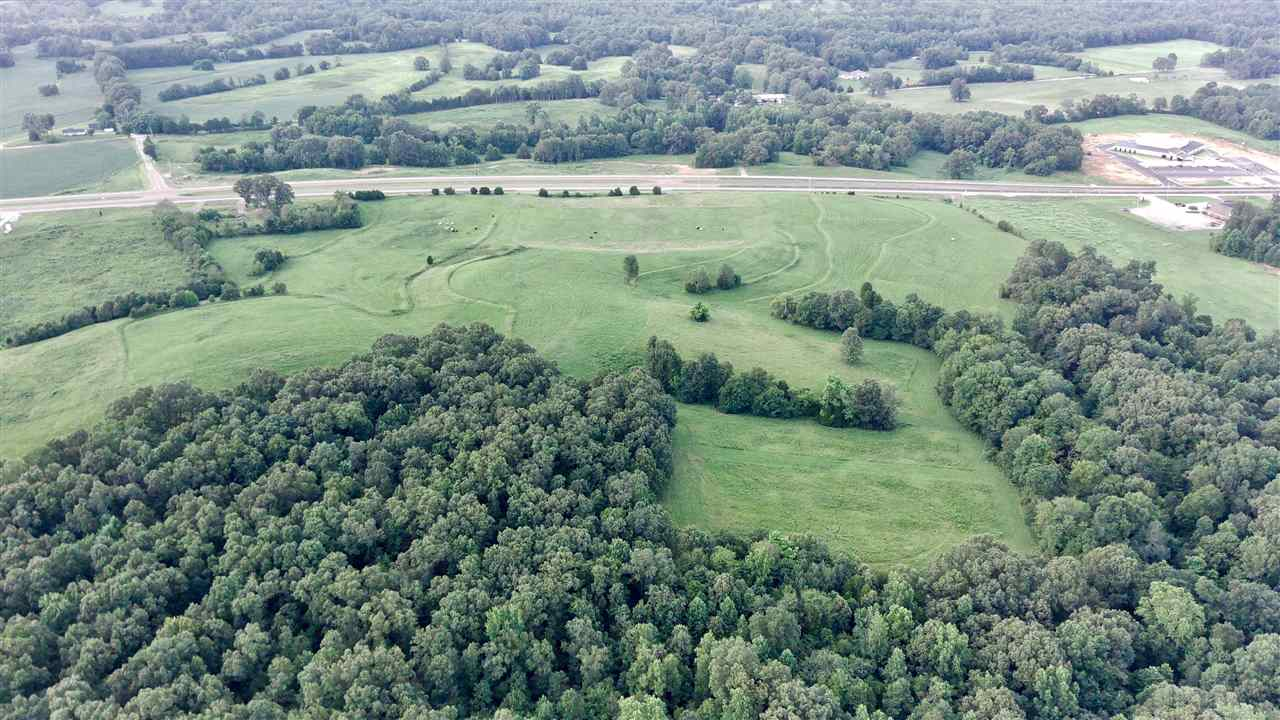0000 Hwy 412 West, Lexington, Tennessee 38351, ,Lots/land,For Sale,0000 Hwy 412 West,202908