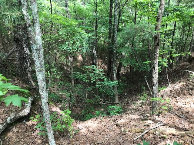 0 Kilgore Road, Toone, Tennessee 38381, ,Lots/land,For Sale,0 Kilgore Road,203210