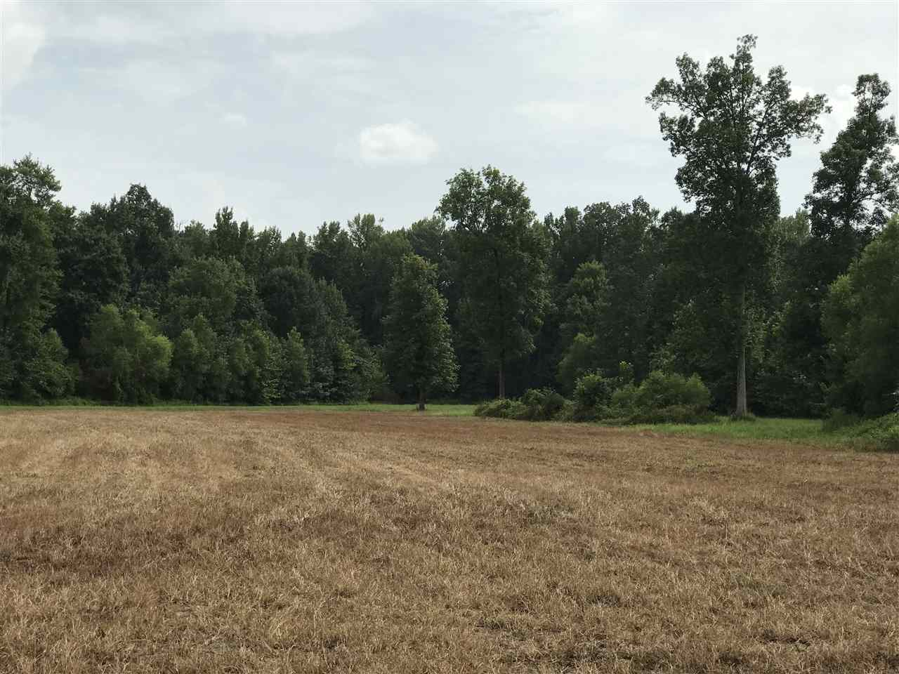 XXXX Serles Road, Middleton, Tennessee 38052, ,Lots/land,For Sale,XXXX Serles Road,203408