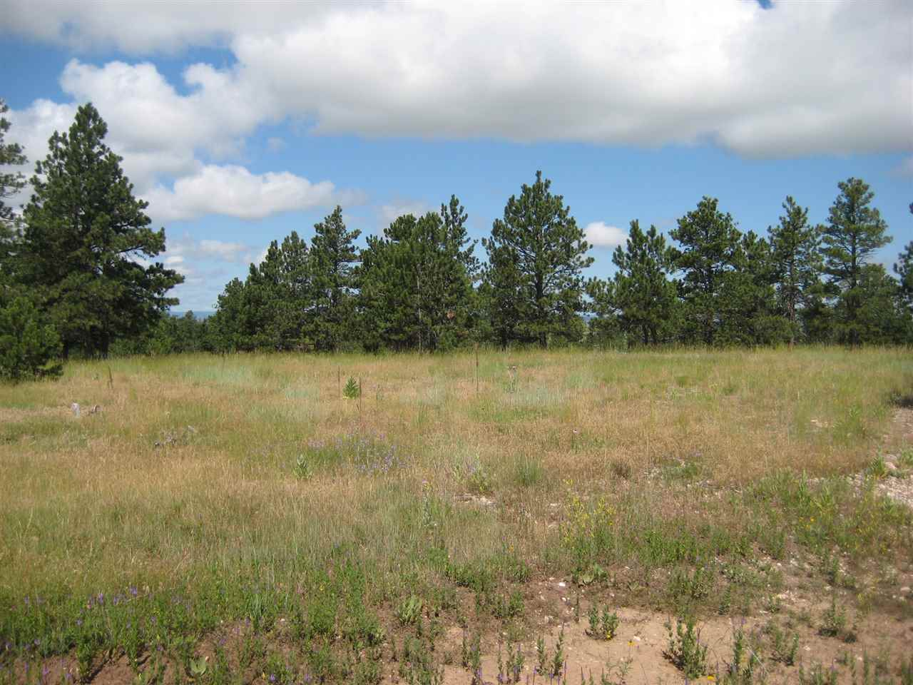 Lot 13, Block 1 Merriam Loop