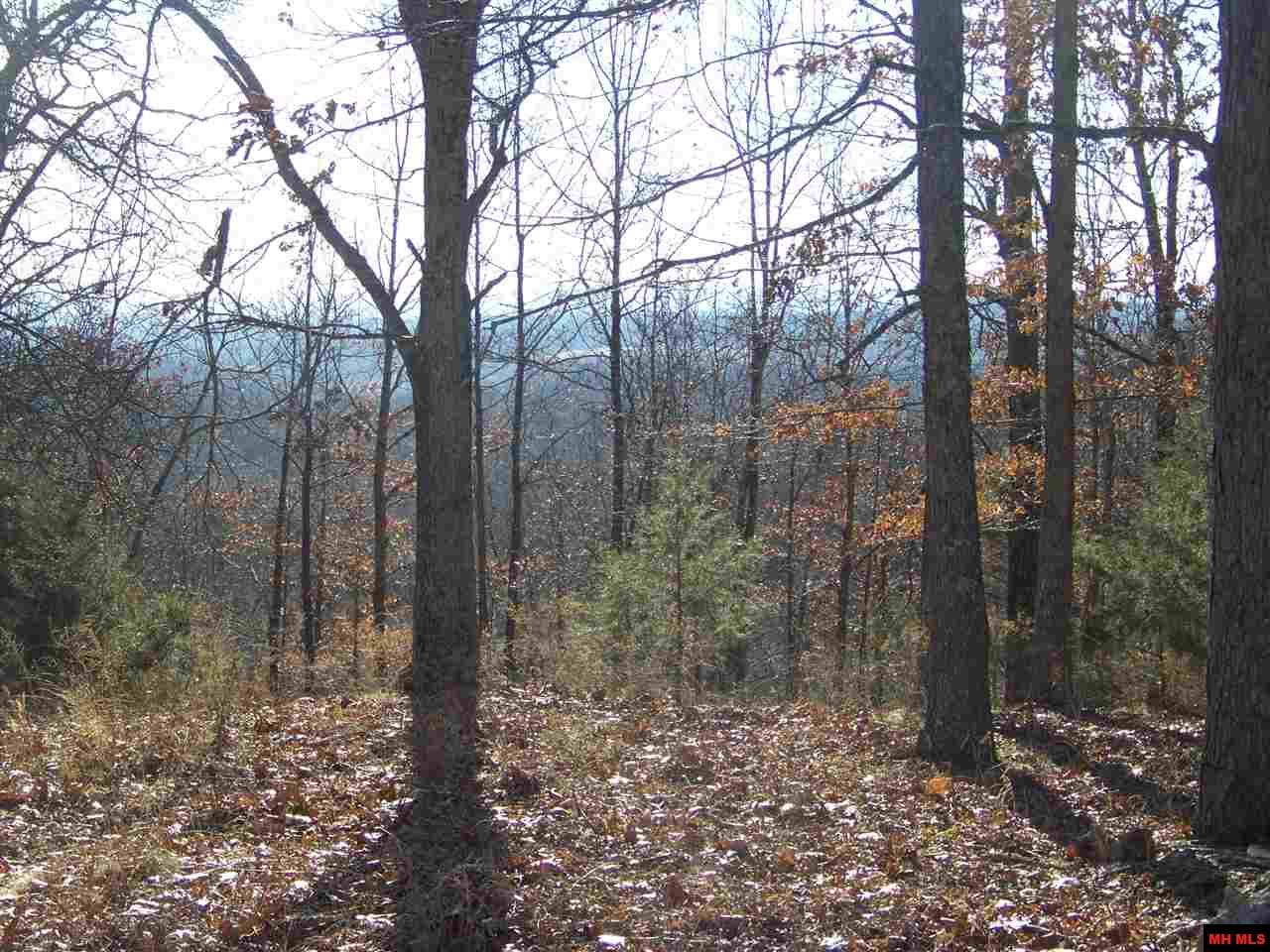14097 HWY 5 NORTH | Mountain Home, AR