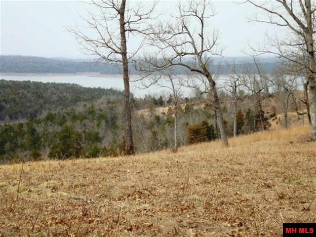 Lot 95 MC 8097 | Yellville, AR