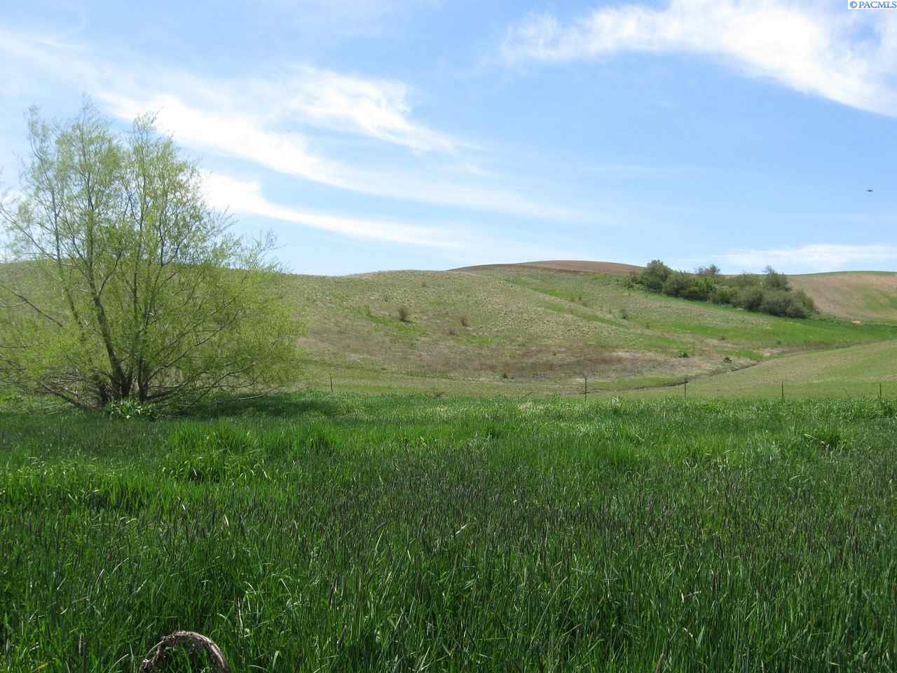 Land for Sale at TBD Becker Road Colton, Washington 99113 United States