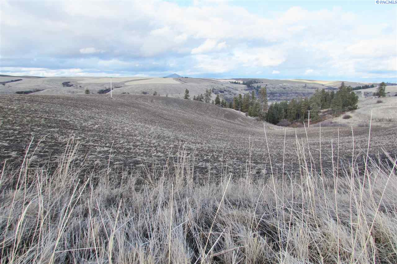 Land for Sale at TBD Hilty Road Colfax, Washington 99111 United States