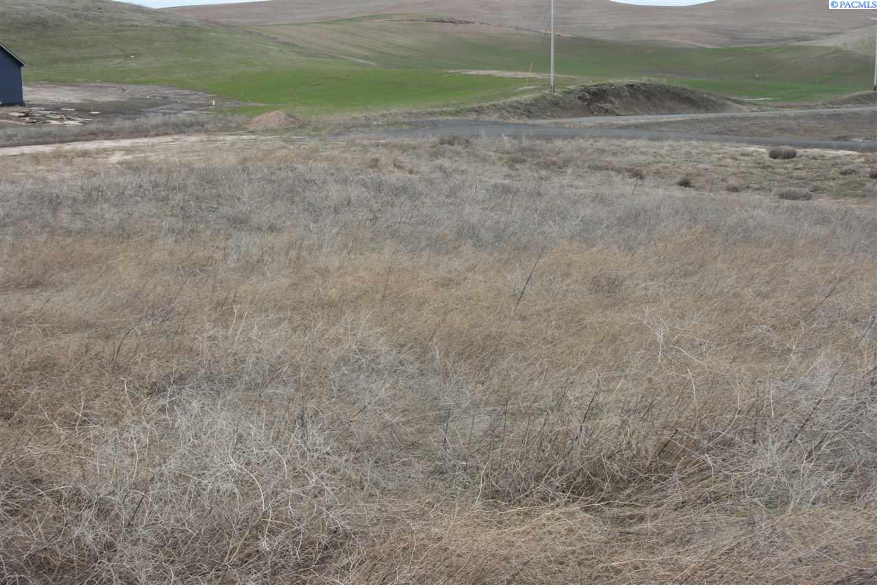 Land for Sale at 1632 J BAR S Road Pullman, Washington 99163 United States