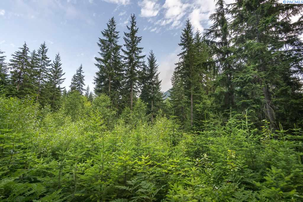 Land for Sale at TBD Lodge Creek Land Cle Elum, Washington 98925 United States
