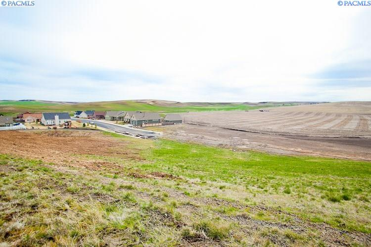 Land for Sale at 1123 Line Court Colton, Washington 99113 United States