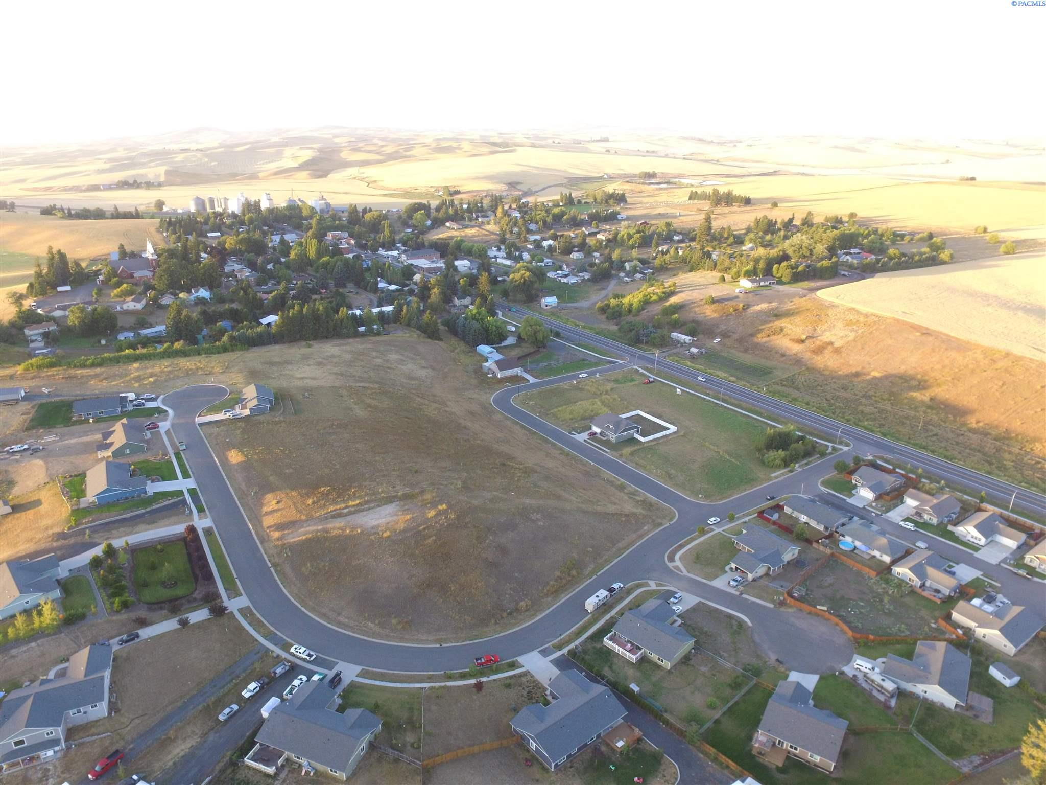 Land for Sale at 313 Welle Drive Uniontown, Washington 99179 United States