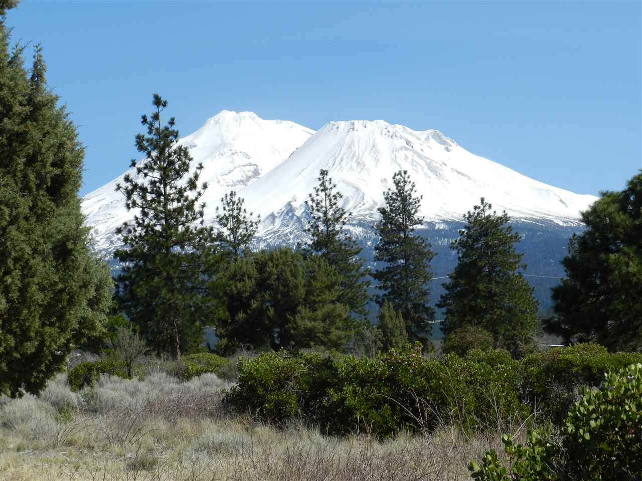 Lake Shastina lot located on a cul-de-sac. With breathtaking views of Mt. Shasta. Sitting on over a quarter of an acre. Ready for you to build your home.