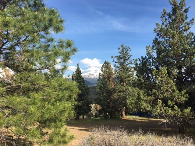 Great Mt Shasta views, located on a cul-de-sac ready to build your dream home. Come and see this great lot today!