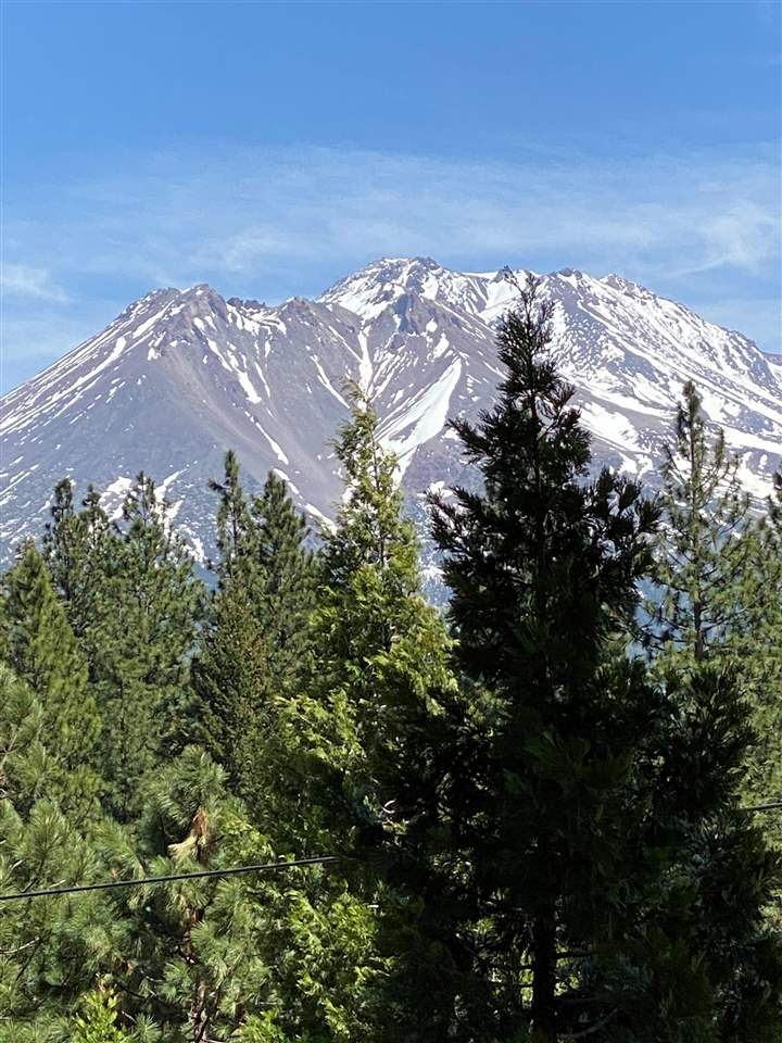 Beautiful view from the 2 acre lot located close to College of the Siskiyous, downtown Weed, and only 20 minutes away from the Mt. Shasta Board & Ski Park, Lake Siskiyou and Lake Shastina Golf Course.  Build your dream home today on this affordable, heavily treed and view filled lot.