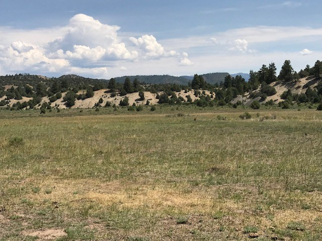 Tract N-4 Willow Way Chama, NM 87520