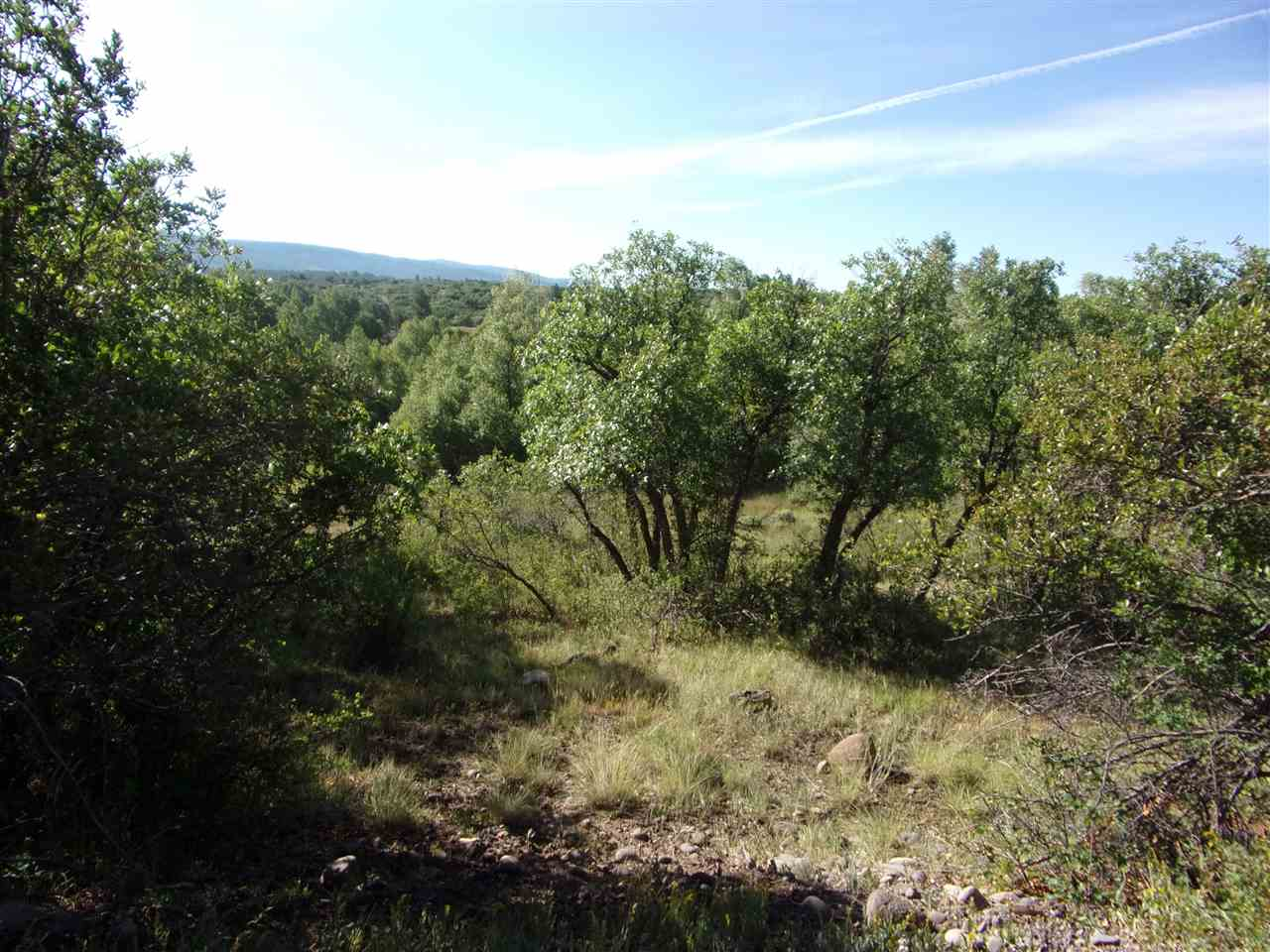 Eagle View Tract Larkspur Way Chama, NM 87520