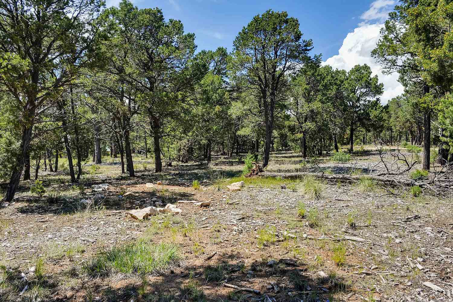 47 Silver Feather Tr Pecos, NM 87552