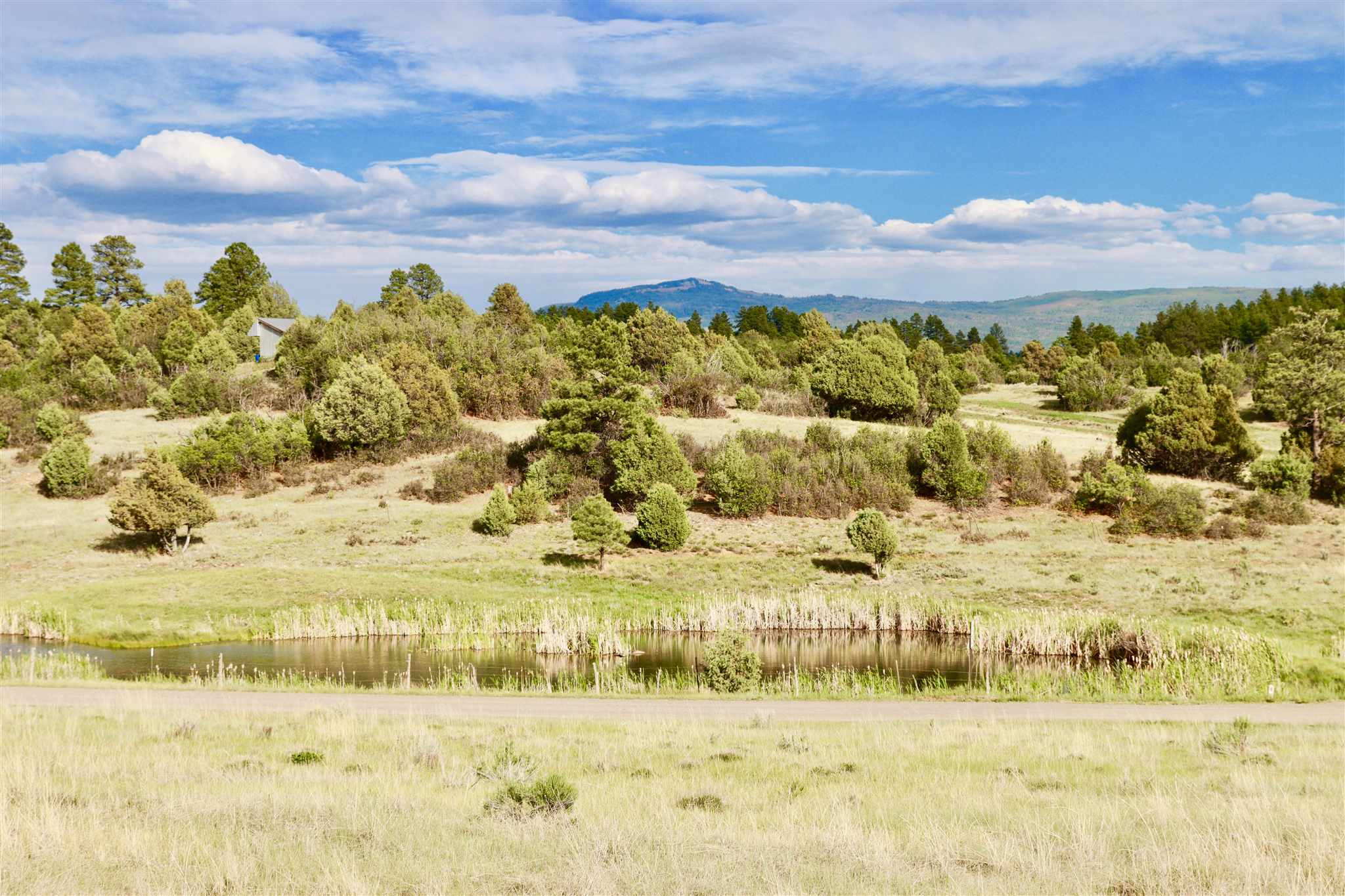 30 County Rd 341 Chama, NM 87520