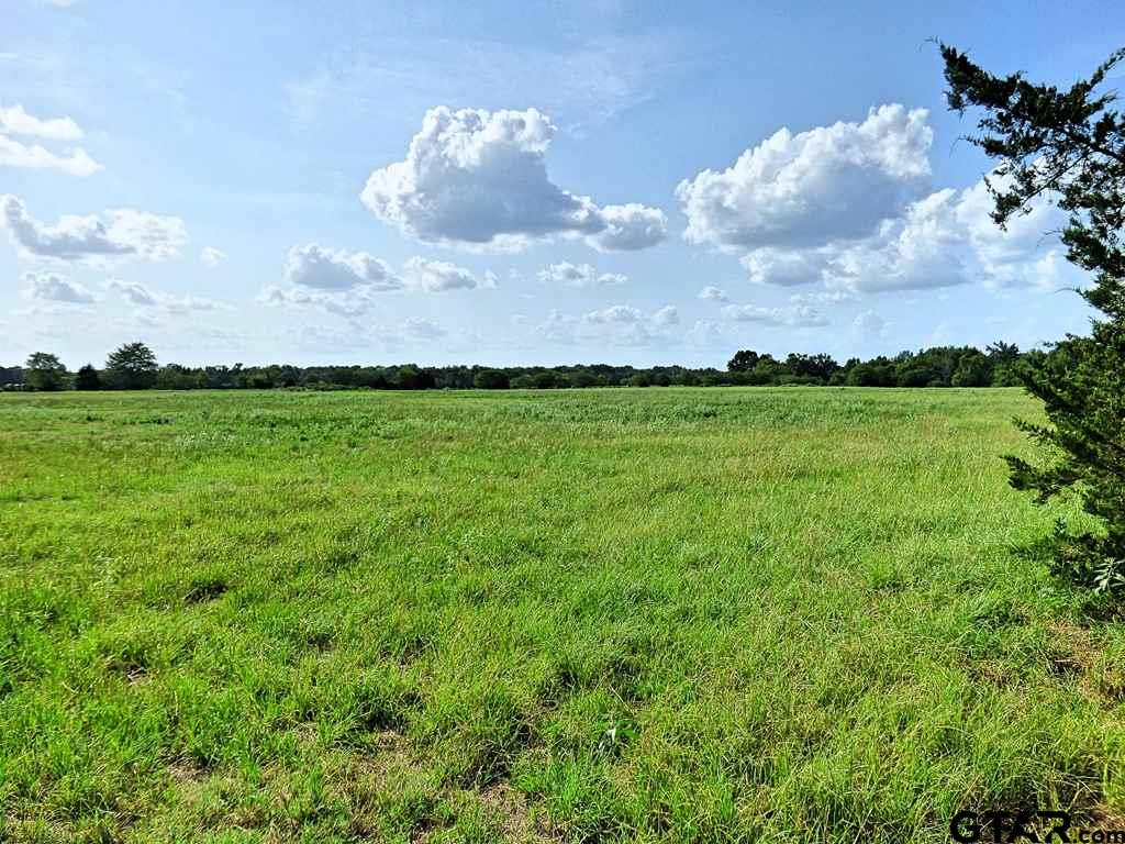 A sight to see! Beautiful tract of land, easy access with 3 sides of road frontage that is over a mile long! 131+ Acres of beautiful land to build your dream home! Fenced and cross fenced, 3 ponds, creek and live spring, perfect for a cattle operation. Call today to set up your private showing.