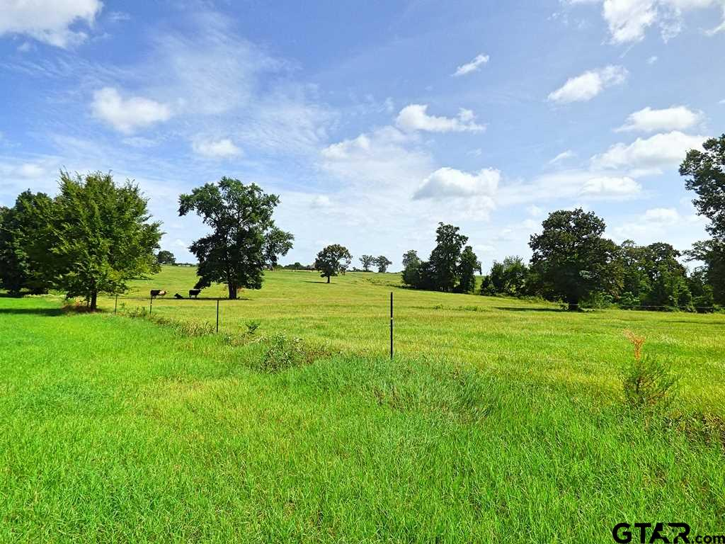 The very best of East Texas! Approx. 105+/- acres with never ending possibilities! Fenced and cross fenced, this ranch is ready for a cattle operation! The property features rolling hills, 2 ponds, and a live creek perfect for all kinds of wildlife! Pick the ideal spot and build your dream home! You won't believe the views this property has to offer!