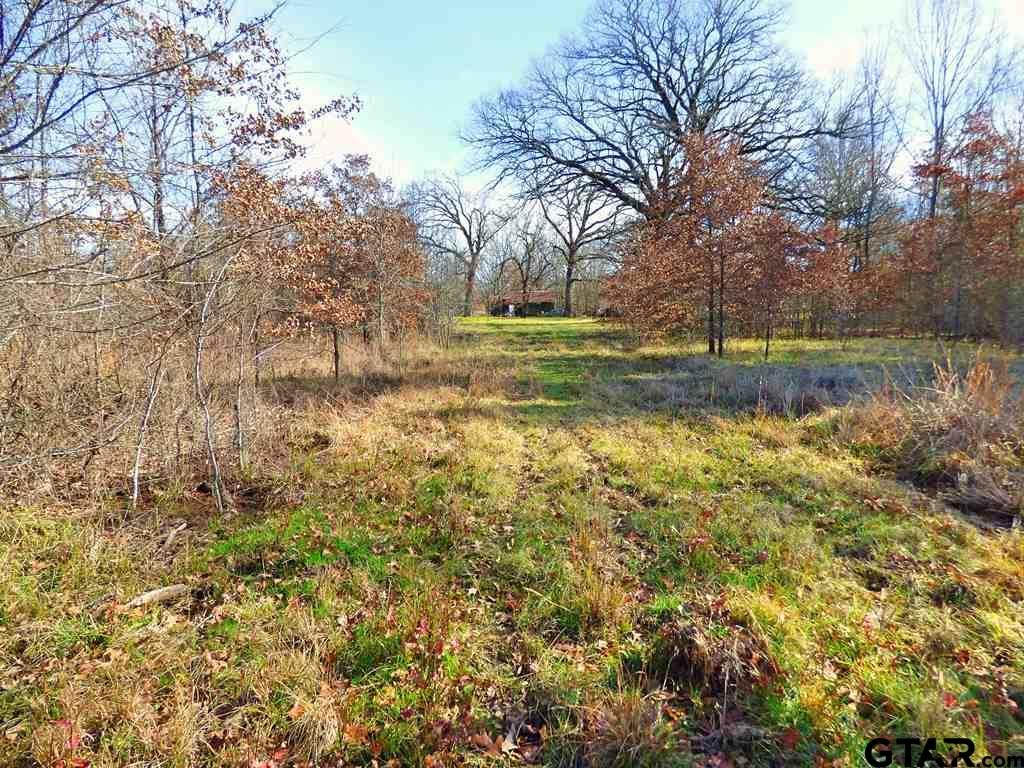 Two tracts adjoining with frontage on CR 1915 and CR 3920, ponds, pasture, timber and abundant wildlife. Great recreational property or home site!