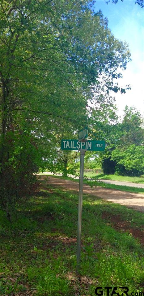 Tailspin Trail