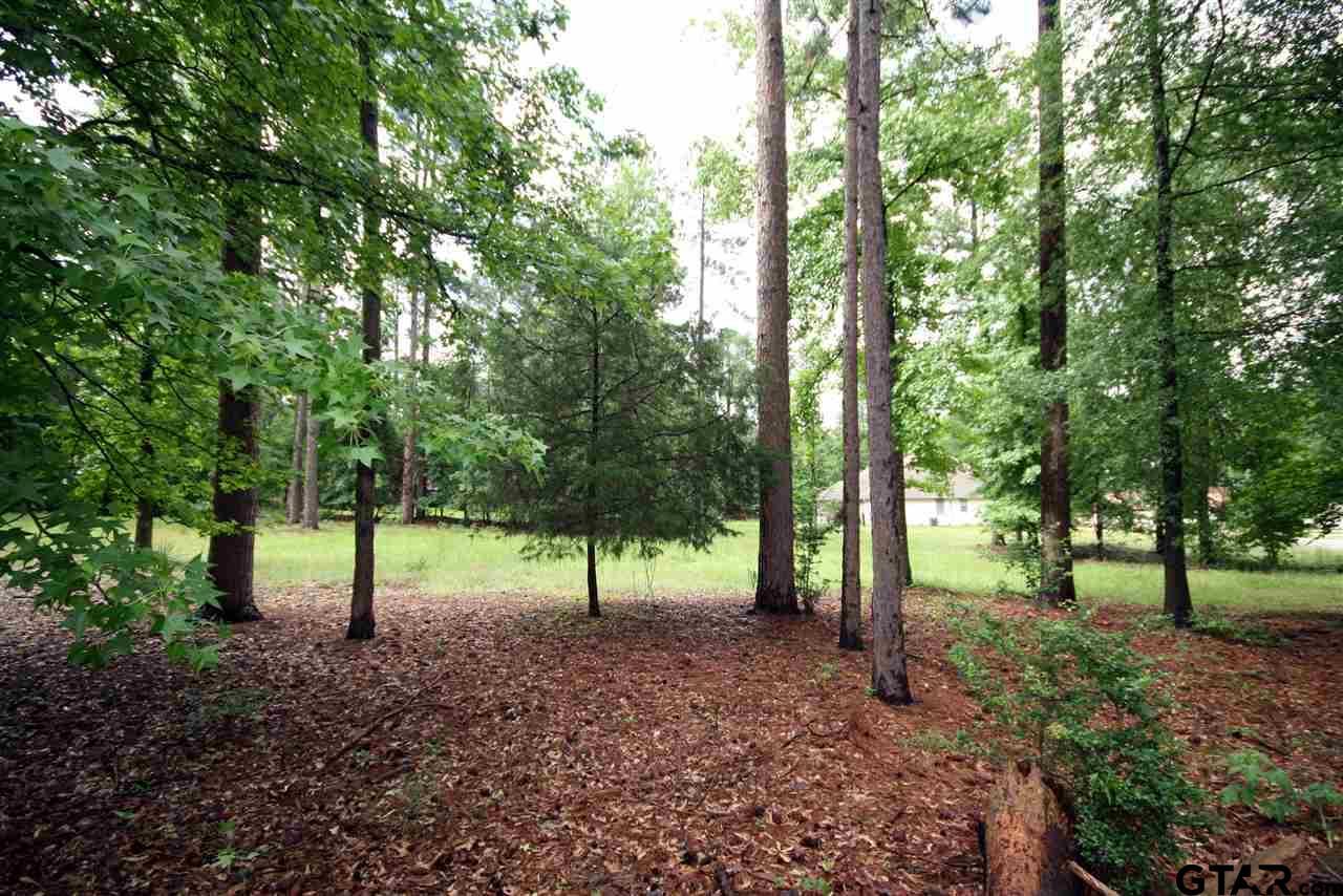 16A, 16B Pine Tree, Holly Lake Ranch, TX 75765 | MLS