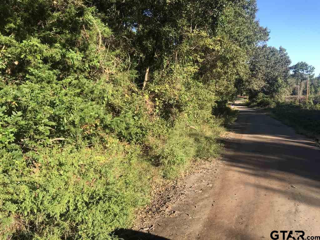 TBD County Road 2619, Marietta, TX 75566