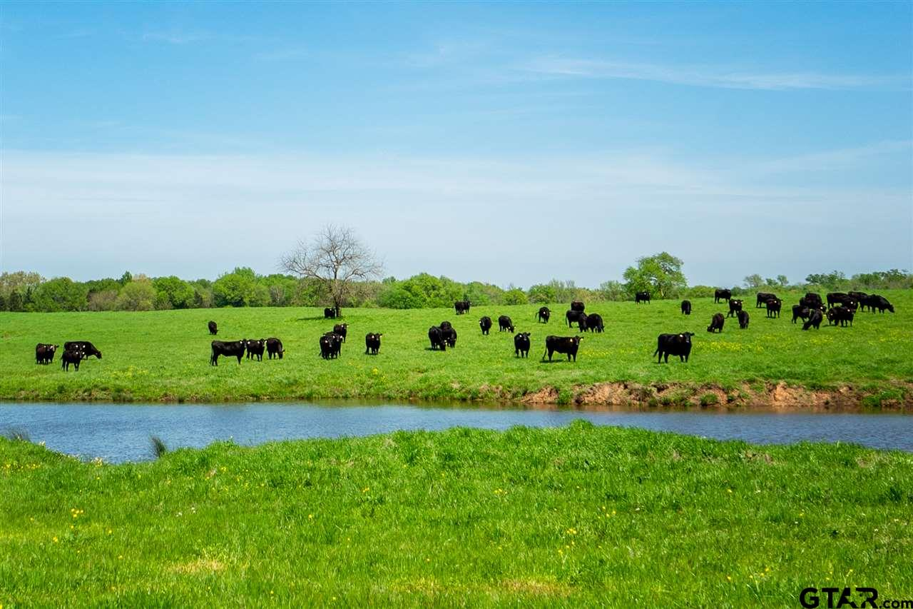 358 Deal Dairy Road, Mt Vernon, TX 75457