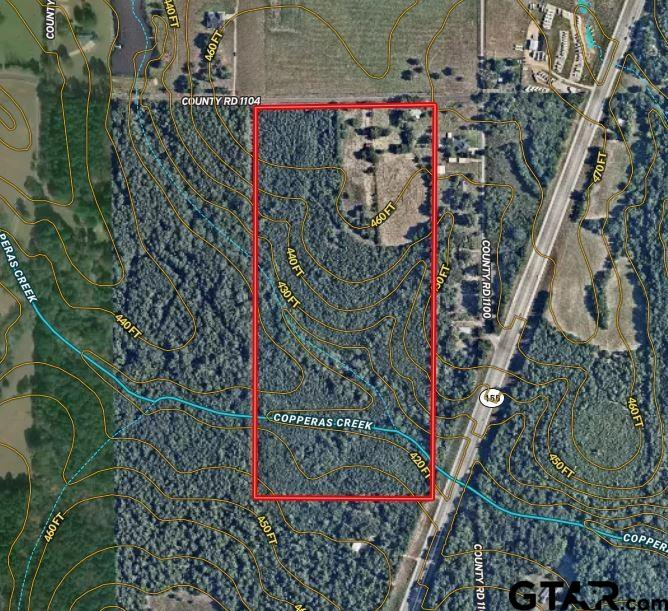 +/- 44 acres located on CR 1104 just west of Highway 155, between Toll 49 and Lake Palestine.  This property has approximately 10 acres of pasture with the remaining 34 acres being primarily pine timber planted approximately 15 years ago. Copperas Creek runs through the southern portion of the property.  Water and electricity are available.