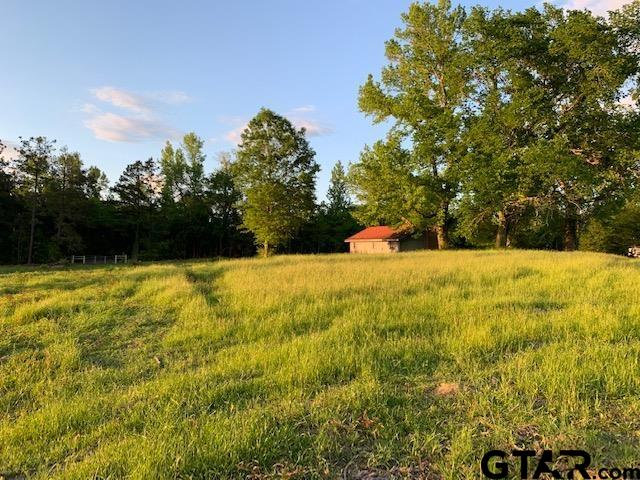Photo for MLS Id 10134684 located at TBD CR 2604