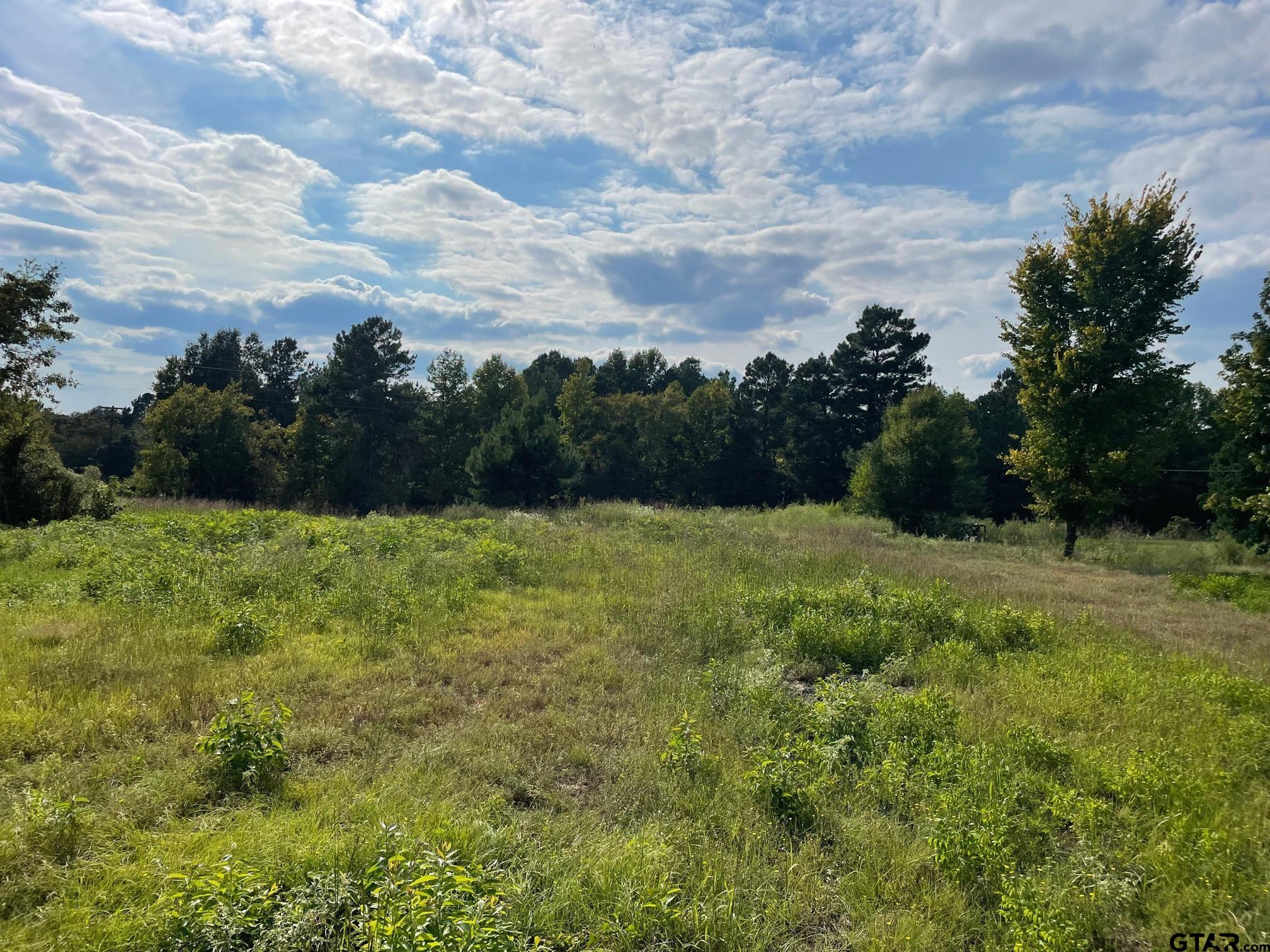 2.8 Acres in Union Grove ISD! This land has been cleared and is ready for you to build on! There is a tank battery on the property and some encumbrances. Drive out and take a look at this beautiful tract.  Call or text for more information!